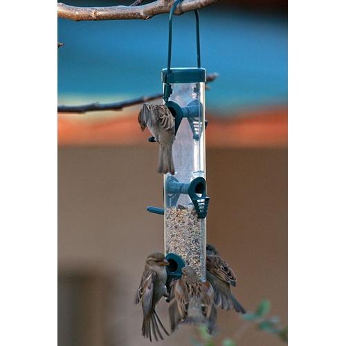 מתקן האכלה ומשיכת ציפורי בר לגינה ולמרפסת