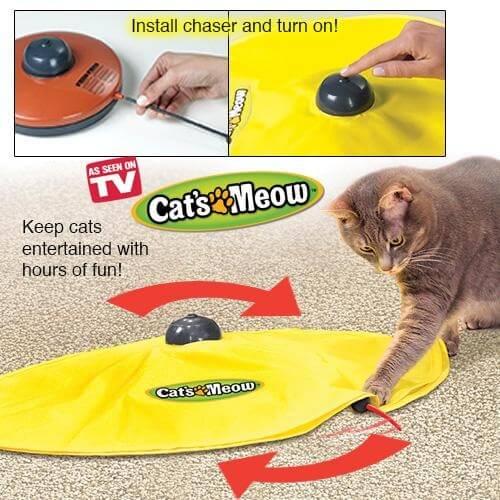 Cat's Meow משחק חתול