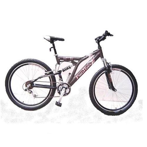 אופני הרים אלומיניום מבית EZ דגם 31 FIRBIRD RS